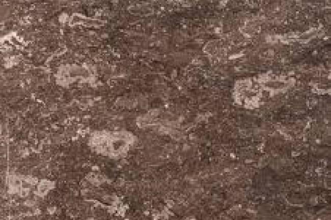 Fantastic Brown -Marble